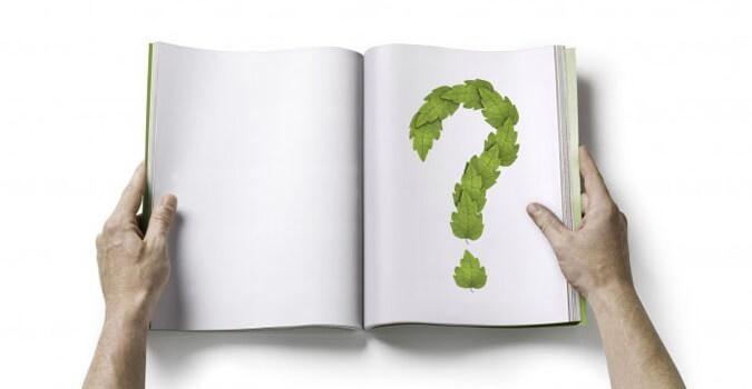 Потребность в познании помогает улучшить жизнь